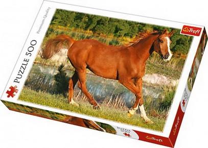 Puzzle Trefl 500 Frumosii caii